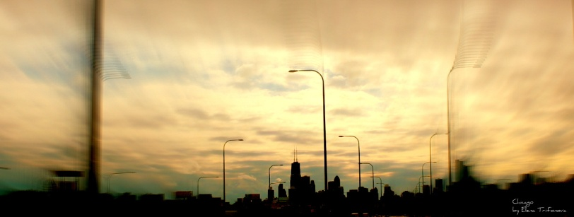 Chicago Skyline Copyrights: Elena Trifonova
